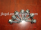 6.3x25 self drilling screw
